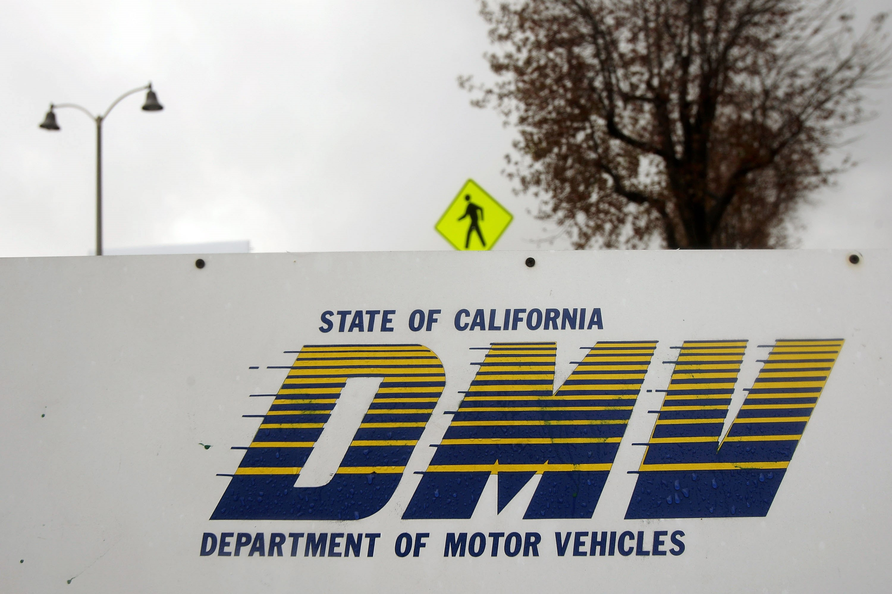 California DMV Improperly Registered License Applicants, Including Aliens, to Vo...