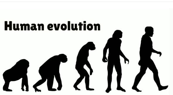 Nobel Prize-Winning Breakthroughs Show Power of Intelligent Design – Not Evolution