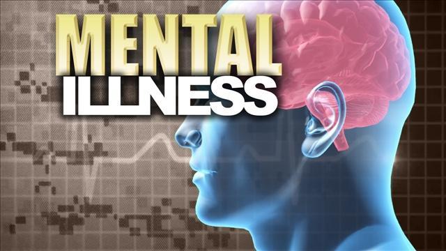 Increasing mental health concerns among youth photo 2