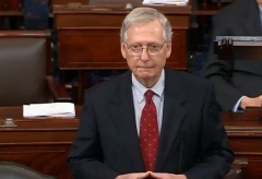 Senate Majority Leader Mitch McConnell (R-Ky.) (Photo: Screen capture)