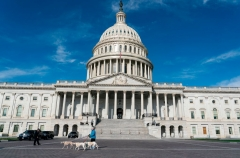 A woman walks her dogs near the US Capitol Building on March 27, 2020, in Washington, DC. - The US House of Representatives is expected to vote on a COVID-19 stimulus bill which was passed by the Senate earlier in the week. (Photo by ALEX EDELMAN/AFP via Getty Images)