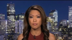 Conservative author Michelle Malkin speaks on Fox News about previous censorship on Facebook. (Photo credit: YouTube/Fox News)