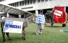 "An Indian man stands between a donkey bearing a ""Democrats"" banner and an elephant bearing a ""Republicans"" banner during an election watch organised at the American Centre in New Delhi, India. (Photo credit: PRAKASH SINGH/AFP via Getty Images)"