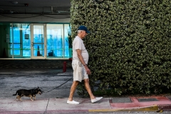 An elderly man walks his dog on south beach in Miami, Fla. (Photo credit: CHANDAN KHANNA/AFP via Getty Images)