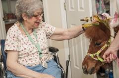 A horse visits the elderly. (Photo credit: Elizabeth W. Kearley/Getty Images)