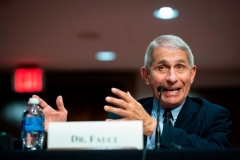 Anthony Fauci, director of the National Institute of Allergy and Infectious Diseases (Photo by AL DRAGO/AFP via Getty Images)