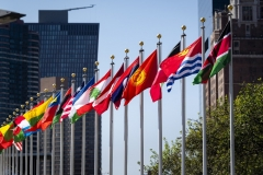 National flags outside U.N. headquarters in New York last month. (UN Photo/Rick Bajornas)