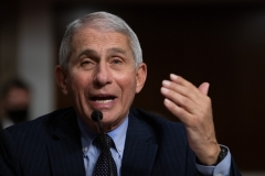 Dr. Anthony Fauci is Director of the National Institute of Allergy and Infectious Diseases (Photo by GRAEME JENNINGS/POOL/AFP via Getty Images)