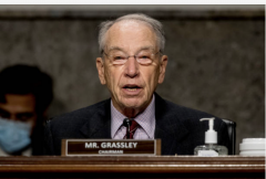 Sen. Chuck Grassley (Andrew Harnik-Pool/Getty Images)