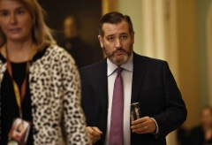 Sen. Ted Cruz (R-Texas) (Photo by BRENDAN SMIALOWSKI/AFP via Getty Images)