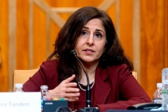 Neera Tanden, nominee for Director of the Office of Management and Budget (OMB), testifies before the Senate Budget Committee on February 10, 2021. (Photo by ANDREW HARNIK/POOL/AFP via Getty Images)