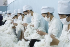 Cotton workers in China's Xinjiang region. (Photo by Chien-min Chung/Getty Images)
