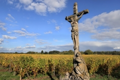 A stone crucifix stands in front of rows of vines as autumn colors mark a change in seasons on October 10, 2019 in Ingersheim, in the Alsace region of eastern France. (Photo credit: David Silverman/Getty Images)