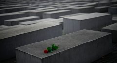 A lone red rose lies on one of the concrete steles of the Memorial to the Murdered Jews of Europe (Holocaust memorial) in Berlin on Nov. 9, 2020. (Photo credit: TOBIAS SCHWARZ/AFP via Getty Images)