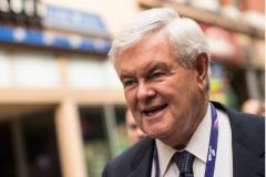 Former GOP House Speaker Newt Gingrich. (Getty Images)