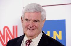 Former House Speaker Newt Gingrich (R-Ga.)  (Getty Images)