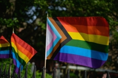A Progress Pride flag and rainbow flags are seen at the Stonewall National Monument, the first US national monument dedicated to LGBTQ history and rights, marking the birthplace of the modern lesbian, gay, bisexual, transgender, and queer civil rights movement, on June 1, 2020 in New York City. (Photo by ANGELA WEISS/AFP via Getty Images)