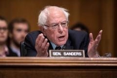 Sen. Bernie Sanders (D-Vt.)  (Getty Images)