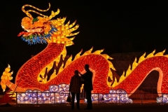 A giant dragon lantern looms over a park in Wuhan in China's central Hubei province. (Photo by HECTOR RETAMAL/AFP via Getty Images)