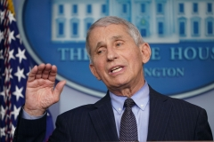 Dr. Anthony Fauci.  (Getty Images)