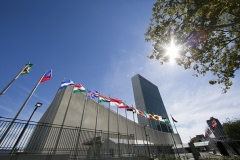 U.N. member-states' flags fly in front of U.N. headquarters in New York. (Photo by Dominick Reuter/AFP via Getty Images)