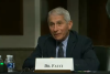 Dr. Anthony Fauci has served as director of the National Institute of Allergy and Infectious Diseases since 1984.  (Photo: Screen capture)
