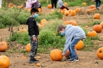 Children wear face masks while picking pumpkins in Chester Township, New Jersey. (Photo by Noam Galai/Getty Images)